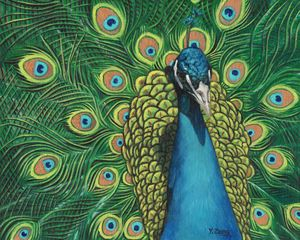 Peacock portrait oil painting