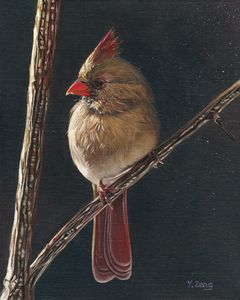Female cardinal bird oil painting