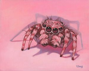 Oil painting Tarantula spider