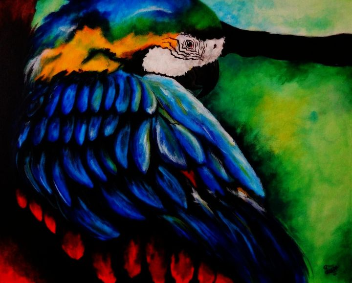 Colorful Macaw (Acrylic on canvas) - Colors Of Life