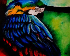 Colorful Macaw (Acrylic on canvas)