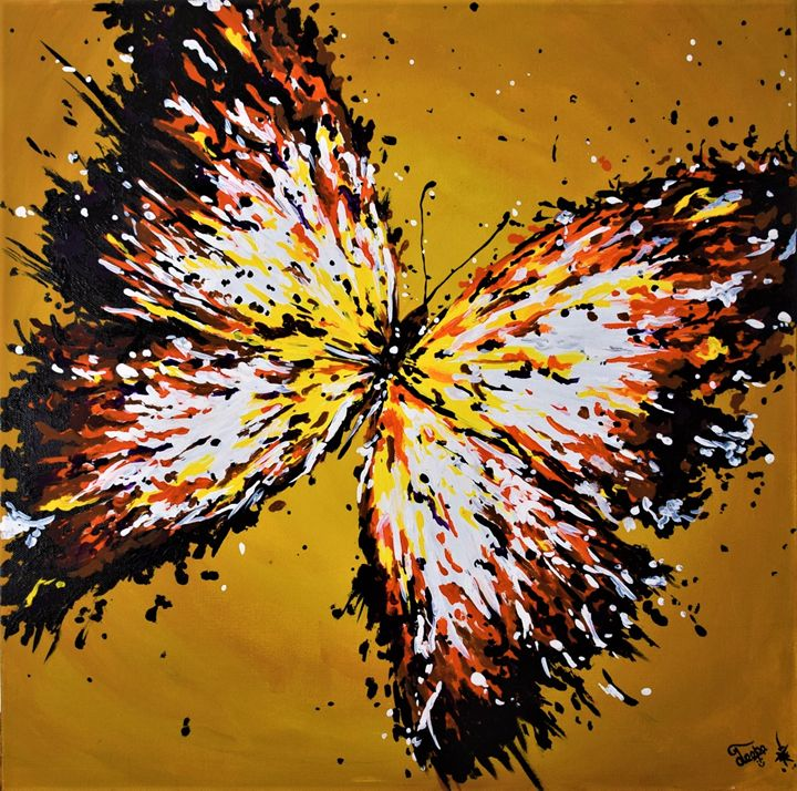 Splash - Butterfly - Colors Of Life