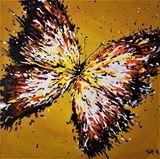 Splash - Butterfly