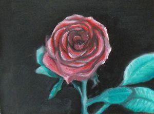 Rose-SOLD