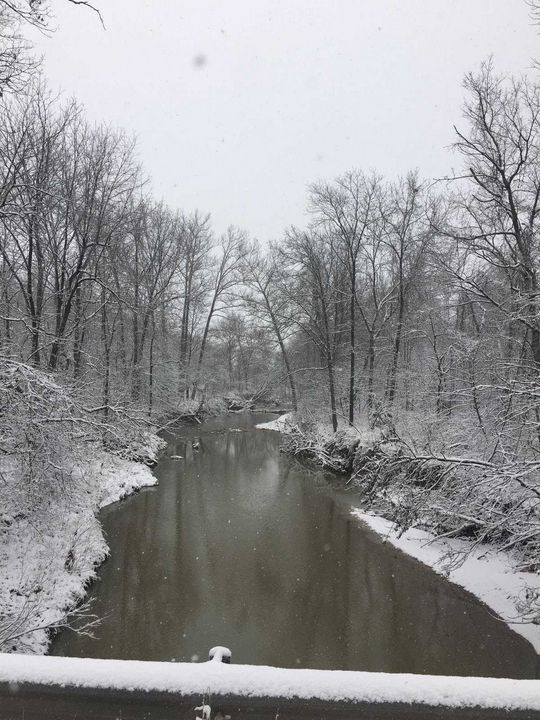 Missouri Winter - ElleJai