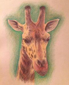 A Pensive Giraffe