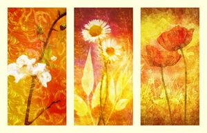 Flower Love Triptych