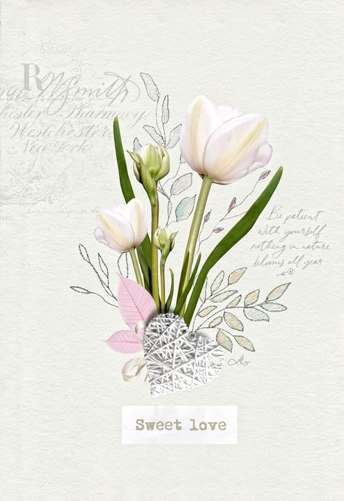Living Flowers - Tulip - Mo