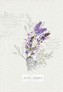 Living Flowers - Muscari