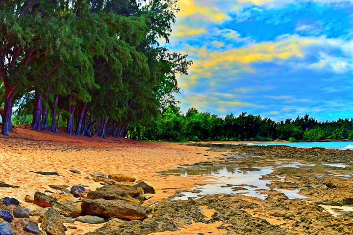 Beach Dream - Bmused Photography by B. Muses