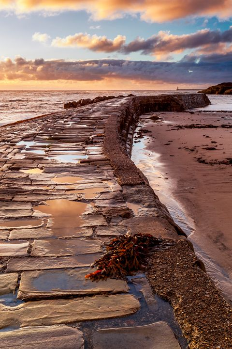 Dawn at Cullercoats Bay #1 - John Cox Photography and Fine Art