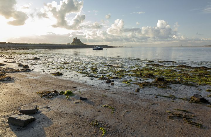Morning at Lindisfarne Castle #2 - John Cox Photography and Fine Art