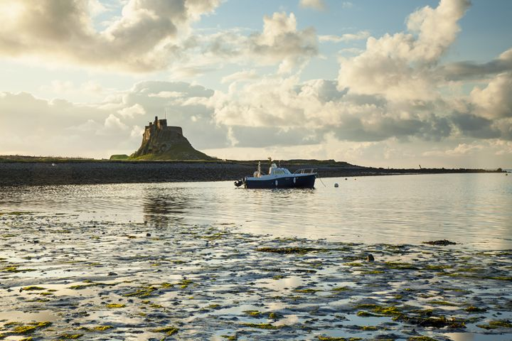 Morning at Lindisfarne Castle, - John Cox Photography and Fine Art