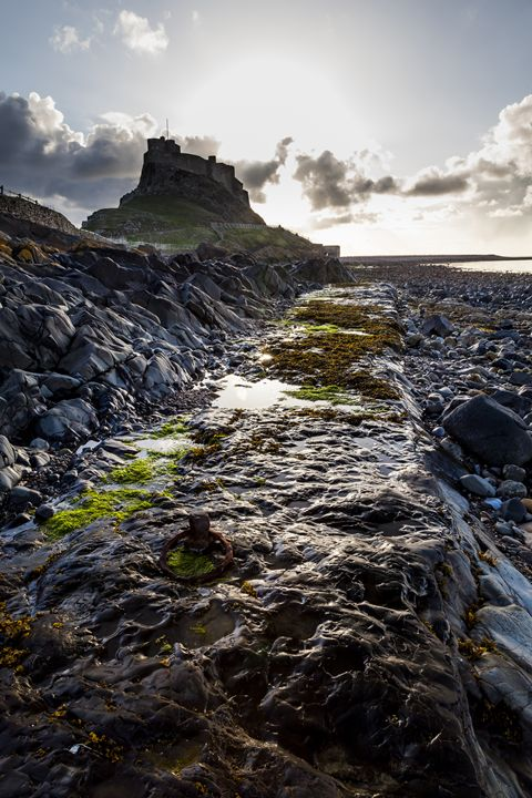 Morning at Lindisfarne. - John Cox Photography and Fine Art