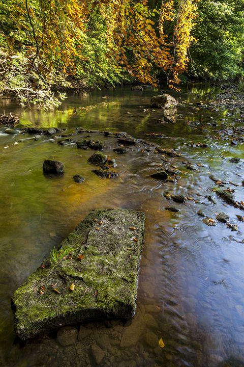 River Blyth, Northumberland. - John Cox Photography and Fine Art