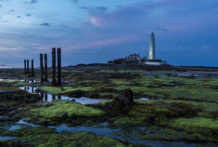 Sundown at St Marys Lighthouse. - John Cox Photography and Fine Art