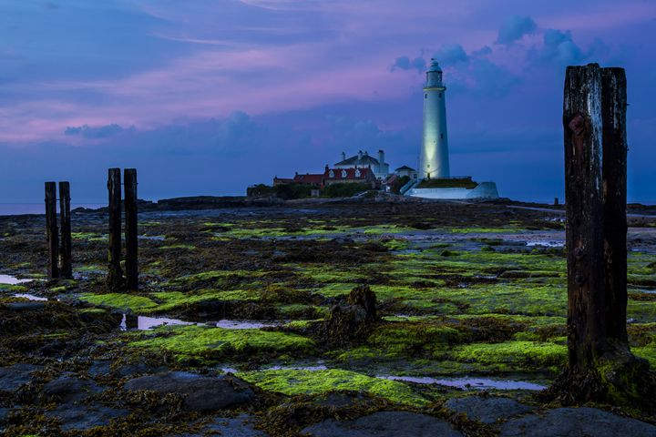 Sundown at St Marys Lighthouse. - John Cox Photography and Fine Art