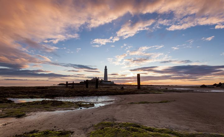 Morning at St Marys Lighthouse. - John Cox Photography and Fine Art