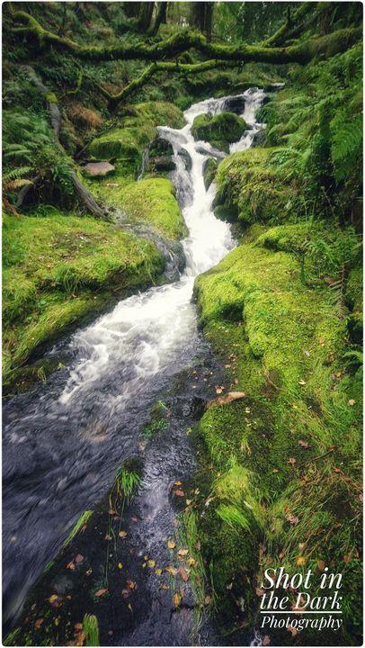 Autumn flow at Dartmoor - Shot in the Dark Photography