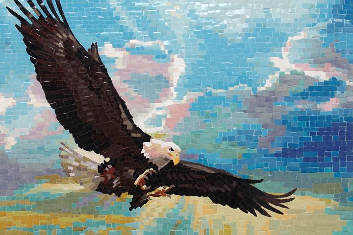 Bald Eagle In Flight - Mai Nhon