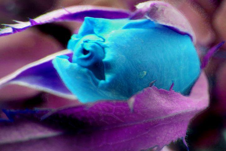 Blue N Purp - BIG Teezy