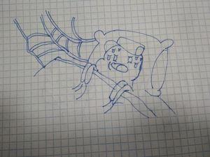 Spider son
