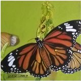 TITLE OF THE WORK: BUTTERFLY MONARCH