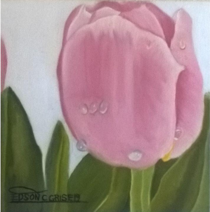 tulipa - edsoncgrise