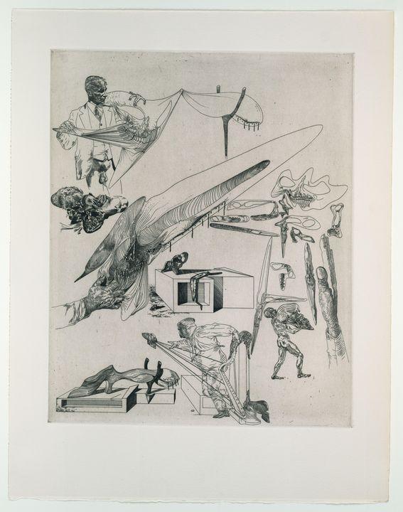 Salvador Dalí - Limp Cranes - Windsor Gallery