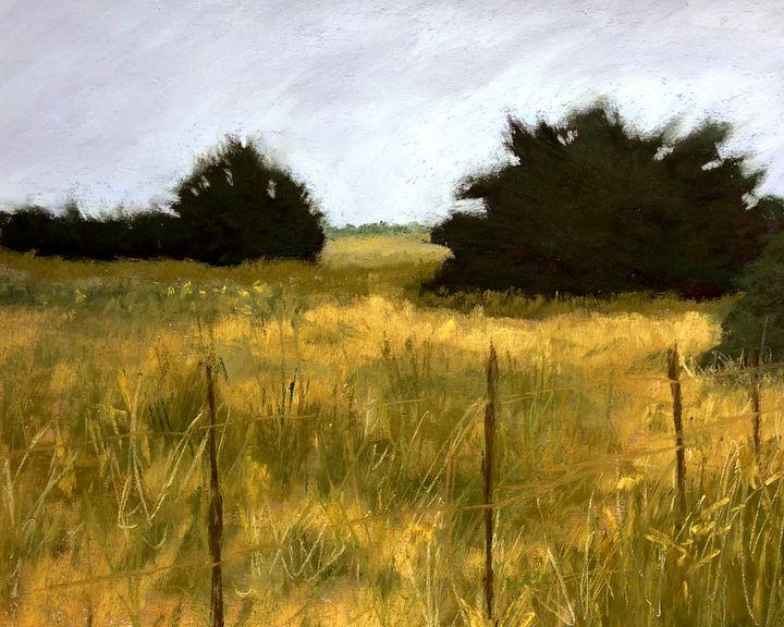 Pasture-Galveston-Midwinter - Howard Keith Clark