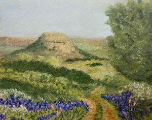 Hill Country with Blue Bonnets