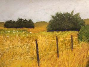 Pasture-Galveston Midwinter #2