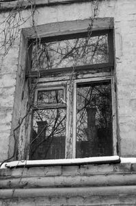 Window with reflected pipes