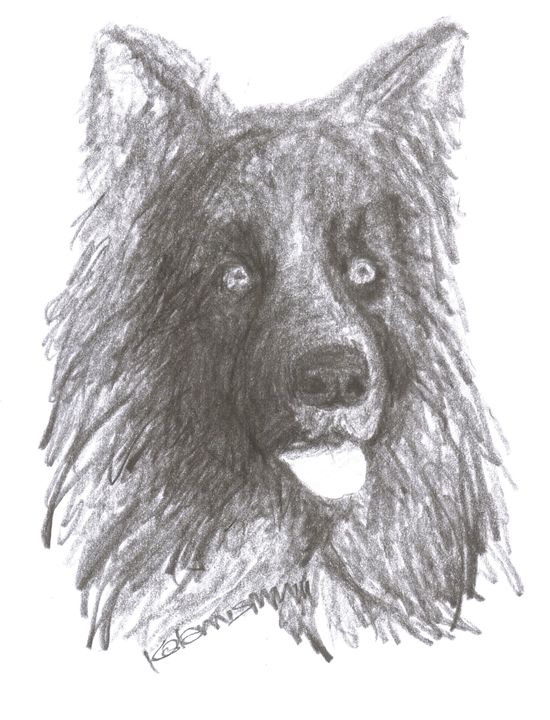 black dog - Printable Drawings