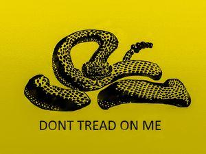 Don't Tread on Me - Neilson Design