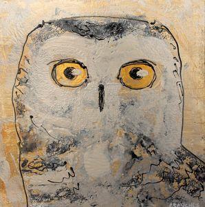 Owl04