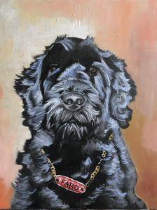 Faro, the dog