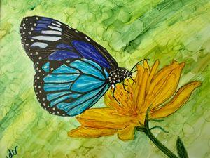 Springtime: Butterfly