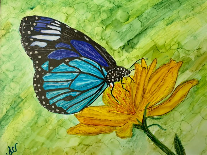 Springtime: Butterfly - DcCreations64