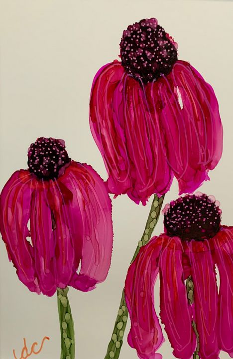 Pink Cone Flowers - DcCreations64