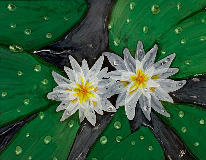 Water Lillies - DcCreations64