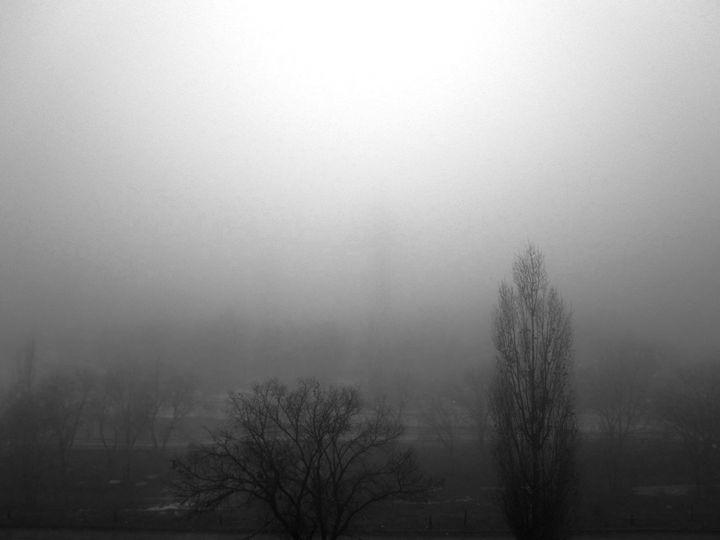 One Foggy Morning - The Art Gallery of Kamil Suleyev