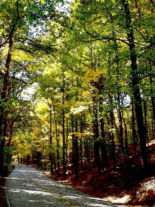 Oak Mountain 015#2 - Bill Love
