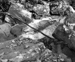 Moss Rock#1