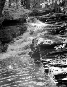 Moss Rock#3 - Bill Love