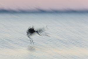 Landing blur