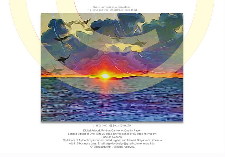 01 18 06 2020 NS Birds Over Sea - algirdasdesign