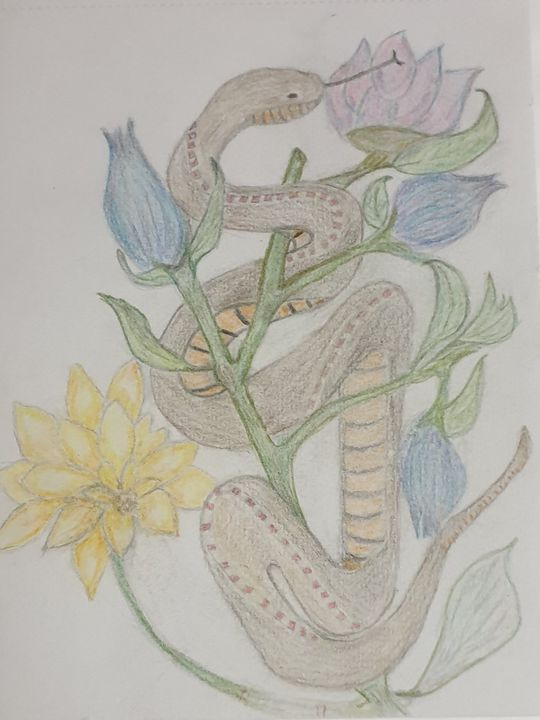 The Snake   by S.M.Croucher - Shazs Lockdown creations