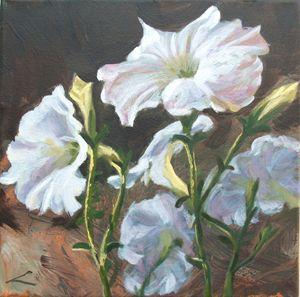Petunias - Elena Sokolova art