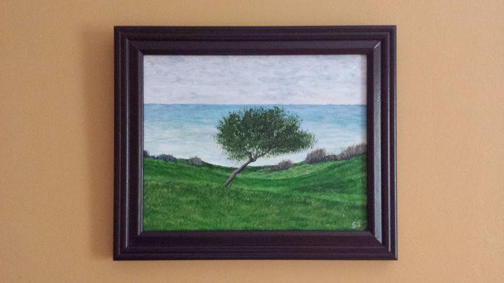 Lone Tree on Shore - Steve Joseph Landscape Art